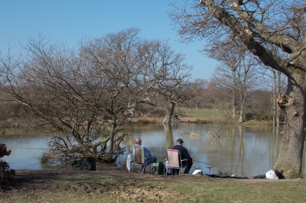 belfry_coarse_fishery_hellingly_hailsham_east_sussex