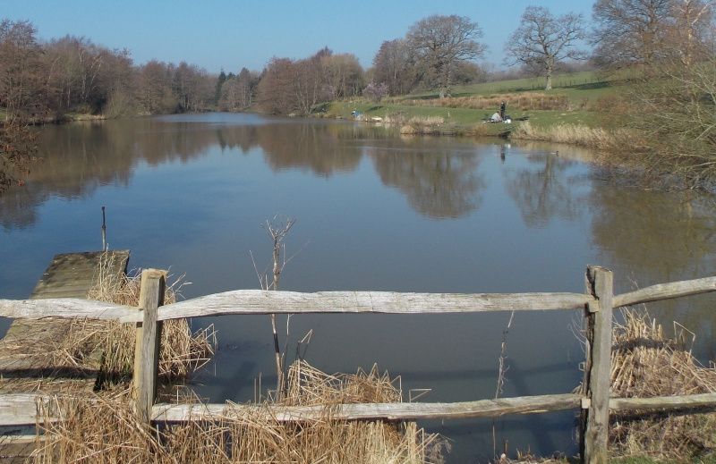 Furnace Brook Fishery