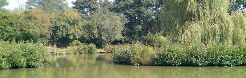 Framfield Fishery